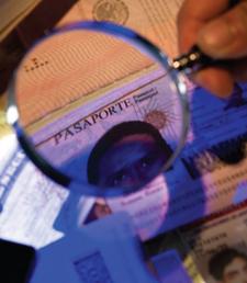 Fraude-à-l'assurance-document-falsification